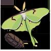 The Mothkeeping Blog