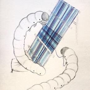 Silkworms Weaving