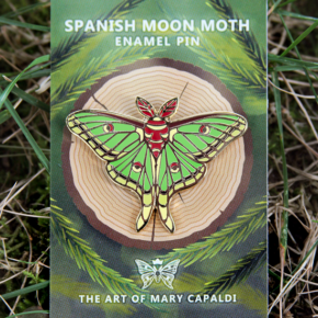 Spanish Moon Moth Enamel Pin
